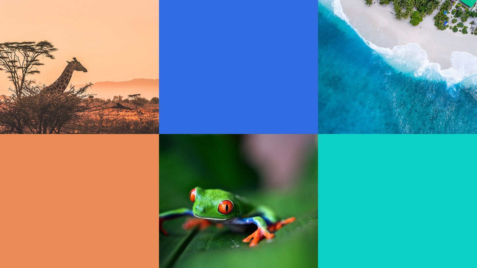 04 palette 2